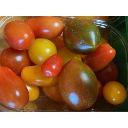 Tomate cerise variée 500 gr