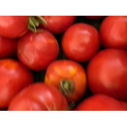 Tomate pour coulis 4 kg