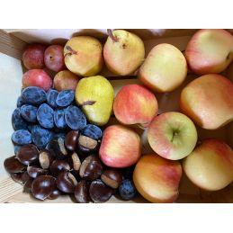 Panier de fruits producteur